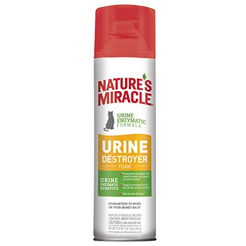 Pour 32 Fl Oz Cat Urine Enzyme Cleaner Nature S